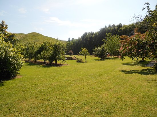 Redcliffe Homestead: The Orchard