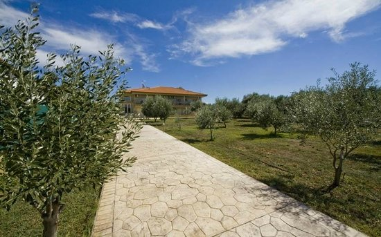 Nea Plagia, Yunanistan: Gaia hotel is built in a quiet place, near the sea, in a lush green garden with olive trees.