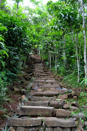 Gunung Padang Megalithic Site: 730 staircases