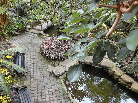 Awana Hotel: Garden