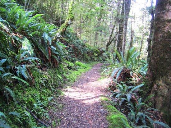 YHA Te Anau: Kepler Track