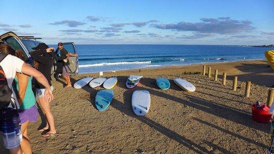 Surfsoulution Fuerteventura: Fuerteventura