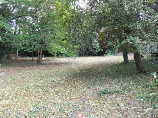 Clos du Bois Brard: parc