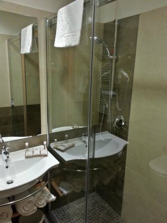 Virginia Palace Hotel: La doccia