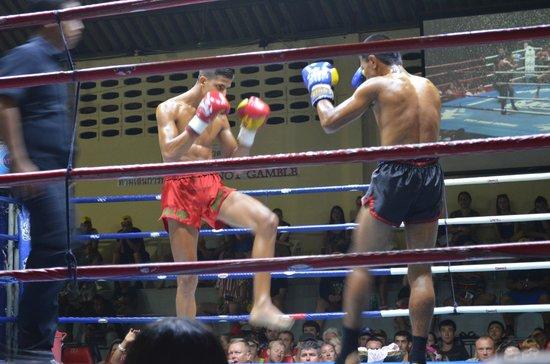 Patong Boxing Stadium: Walki naprawdę robiły wrażenie