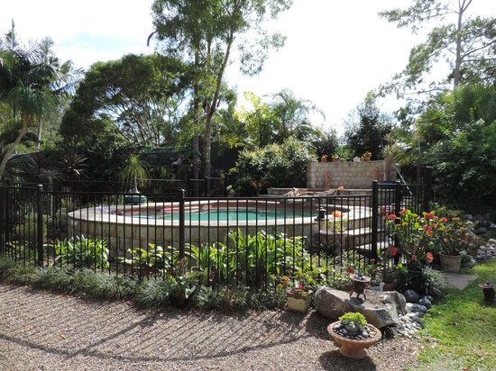 Noosa Valley Manor B&B Retreat : Pool