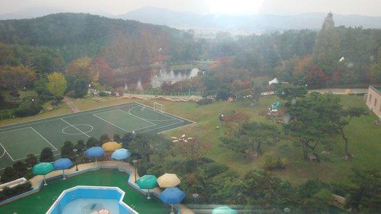 Gyeongju Kolon Hotel: 窓からの景色