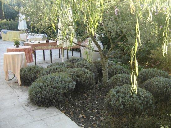 Auberge des Pins : vin honneur jardin