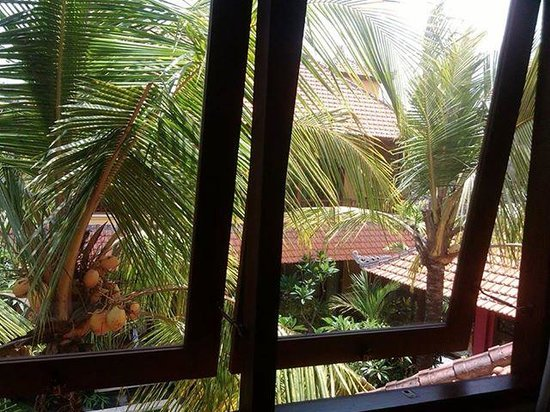 Mawa House: view from room