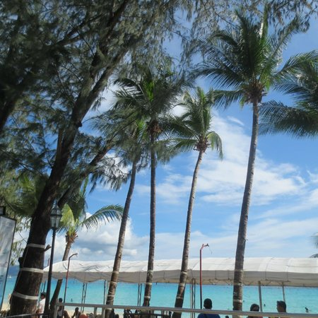 La Carmela de Boracay : view from the pool