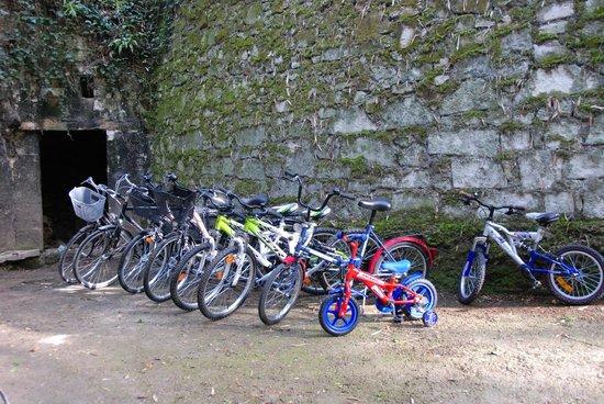 Chateau de Jalnay : bicyclettes