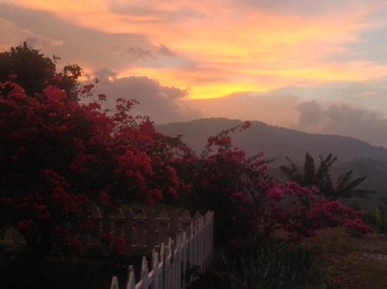 Sabah Tea Garden: sunset