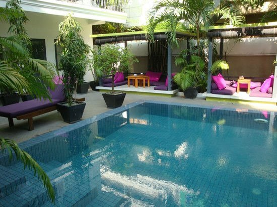 the 252 : Garden & pool