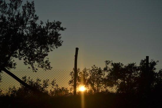 Agriturismo Le Cerqueta : il tramonto