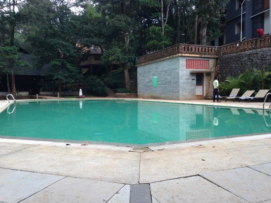 Vythiri Village Resort : Pool