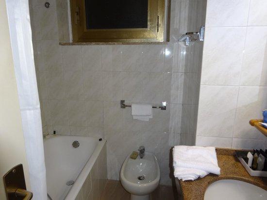 FH Grand Hotel Palatino : バスルーム