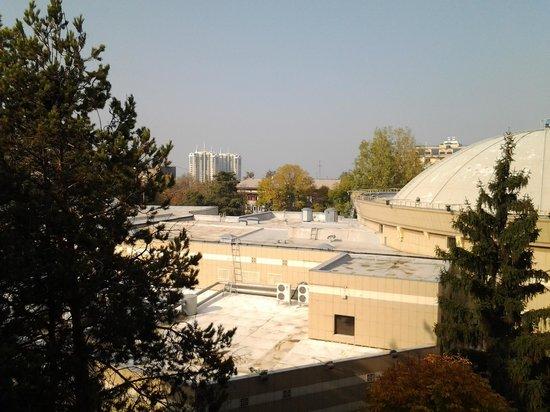 Worldhotel Saltanat Almaty: Вид из окна