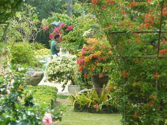 Thavorn Palm Beach Resort : Во время ливня