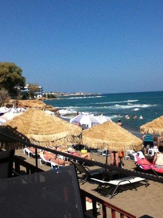 Golden Beach Hotel : пляж