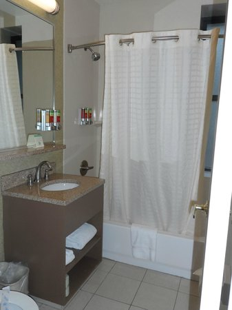 The Hotel at Times Square : baño