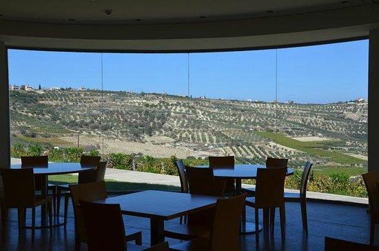 Boutari Winery: панорама