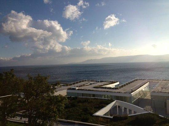 Novi Spa Hotel & Resort: View