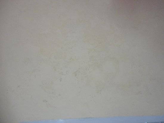 Hotel Blue Valley: walls full of seepage