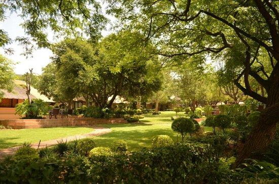 Black Eagle Boutique Hotel & Conferences : Gardens