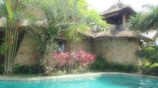 Saudara Home : view from the pool