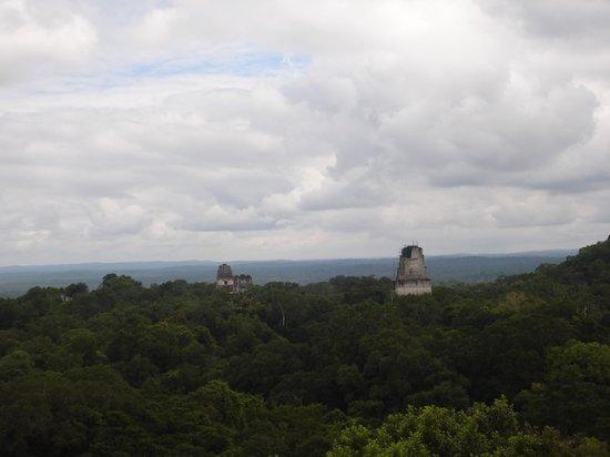วิหารที่ 4: The view from top of Temple IV
