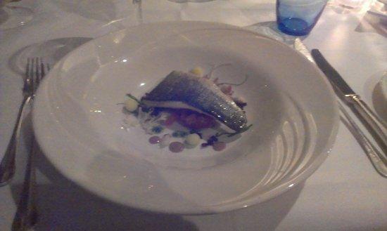 't Gesprek : Some fish