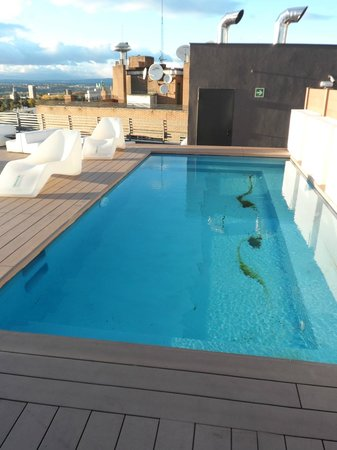 Mini piscina / Tiny swimming pool - Picture of Hotel Exe Moncloa