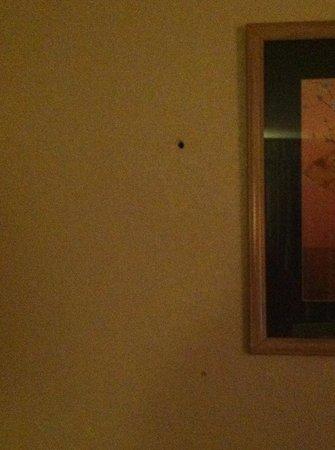 Shayona Inn Extended Stay: bullet hole