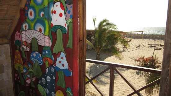 Misfit Hostel: looking out