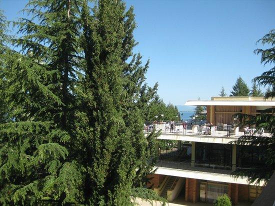 Hotel Tourist - Metropol Lake Resort: Uitzicht vanaf balkon richting restaurant