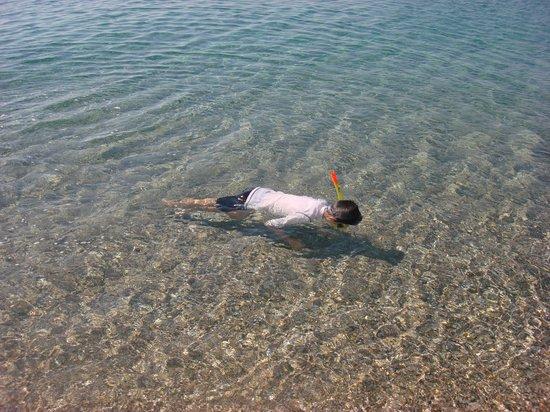 Villa Drossia: Snorkeling in clean, clear water