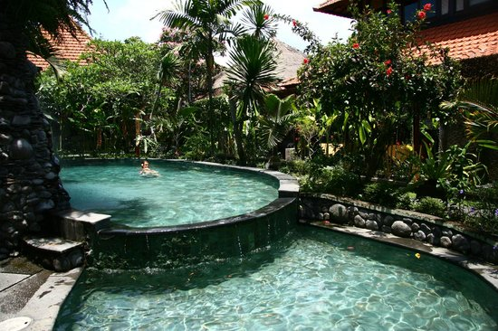 Tunjung Mas Bungalows and Resort: Просторный, глубокий, чистый бассейн