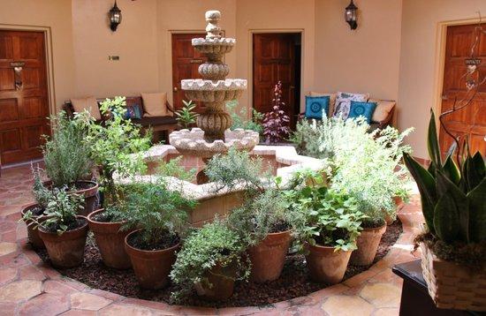 Hippocrates Health Institute : Interior of Oasis Spa