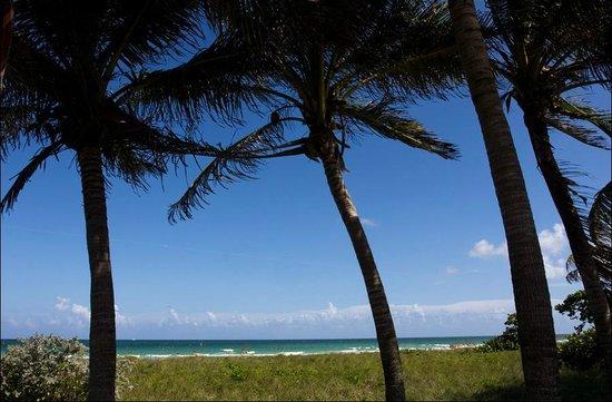 Ocean Surf Blue: Вид с веранды отеля на океан