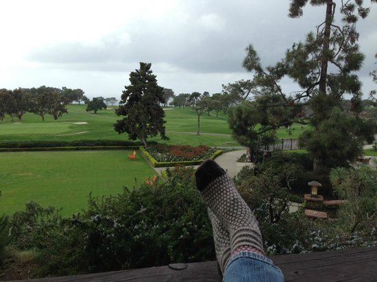The Lodge at Torrey Pines: View from our private patio.