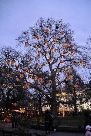 Rathausplatz: Illumination