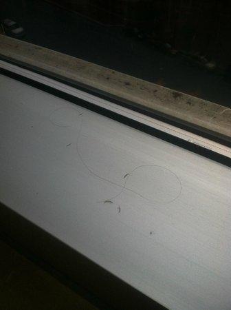 Hilton Harrisburg: Human Finger Nails, Hair, Room 605