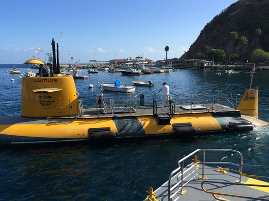 Catalina Adventure Tours: The Sub
