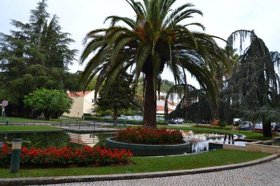 Hotel dos Templarios : Área verde deslumbrante