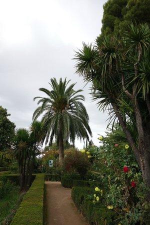 Parador de Granada: jardins