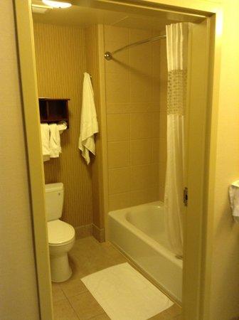 Hampton Inn & Suites Scottsdale/Riverwalk : Average bathroom