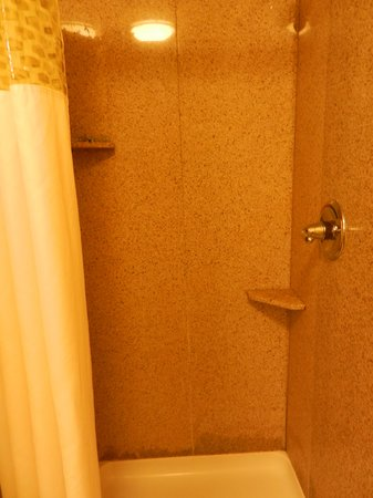 Hampton Inn & Suites Bremerton: Photo doesn't convey how small the shower stall is.