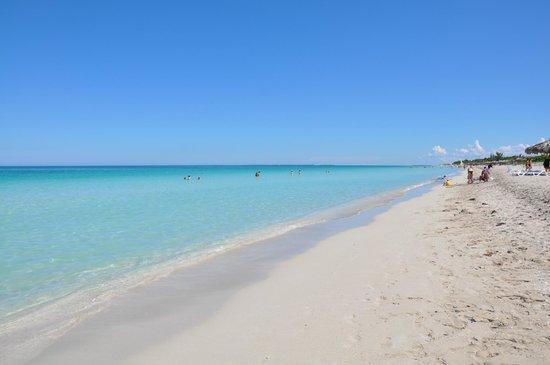 IBEROSTAR Laguna Azul: plage de l'hôtel