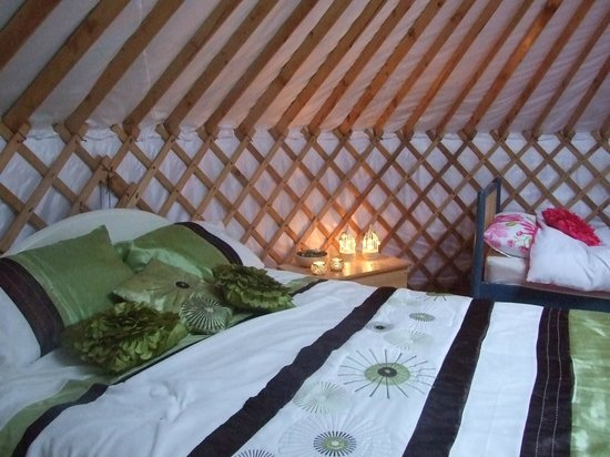 Ireland Glamping - Pink Apple Orchard: The Weaving Willow Celtic Yurt