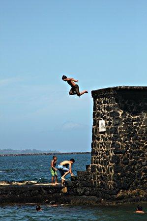 Coconut Island : Jump